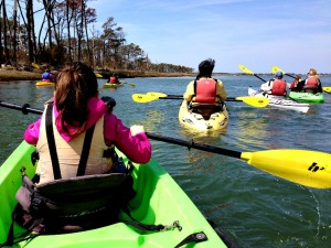 Kayaking in Assateague